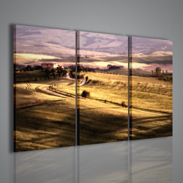 Quadri moderni su tela quadri moderni pronti da for Quadri per soggiorni moderni
